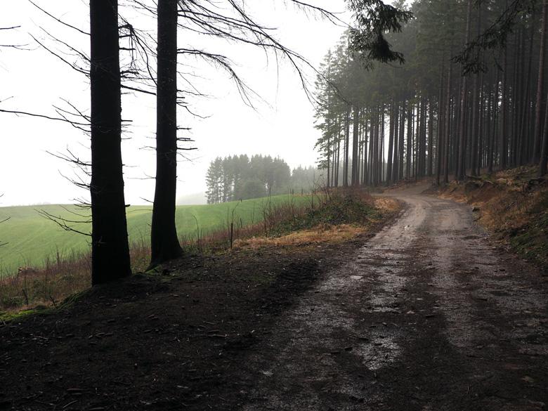 open veld voor Böminghausen