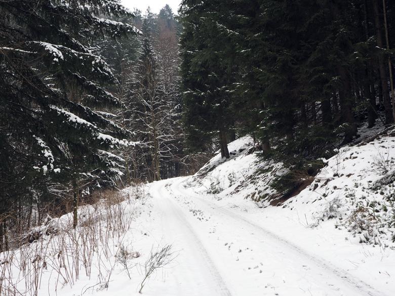 klim naar Langewiese