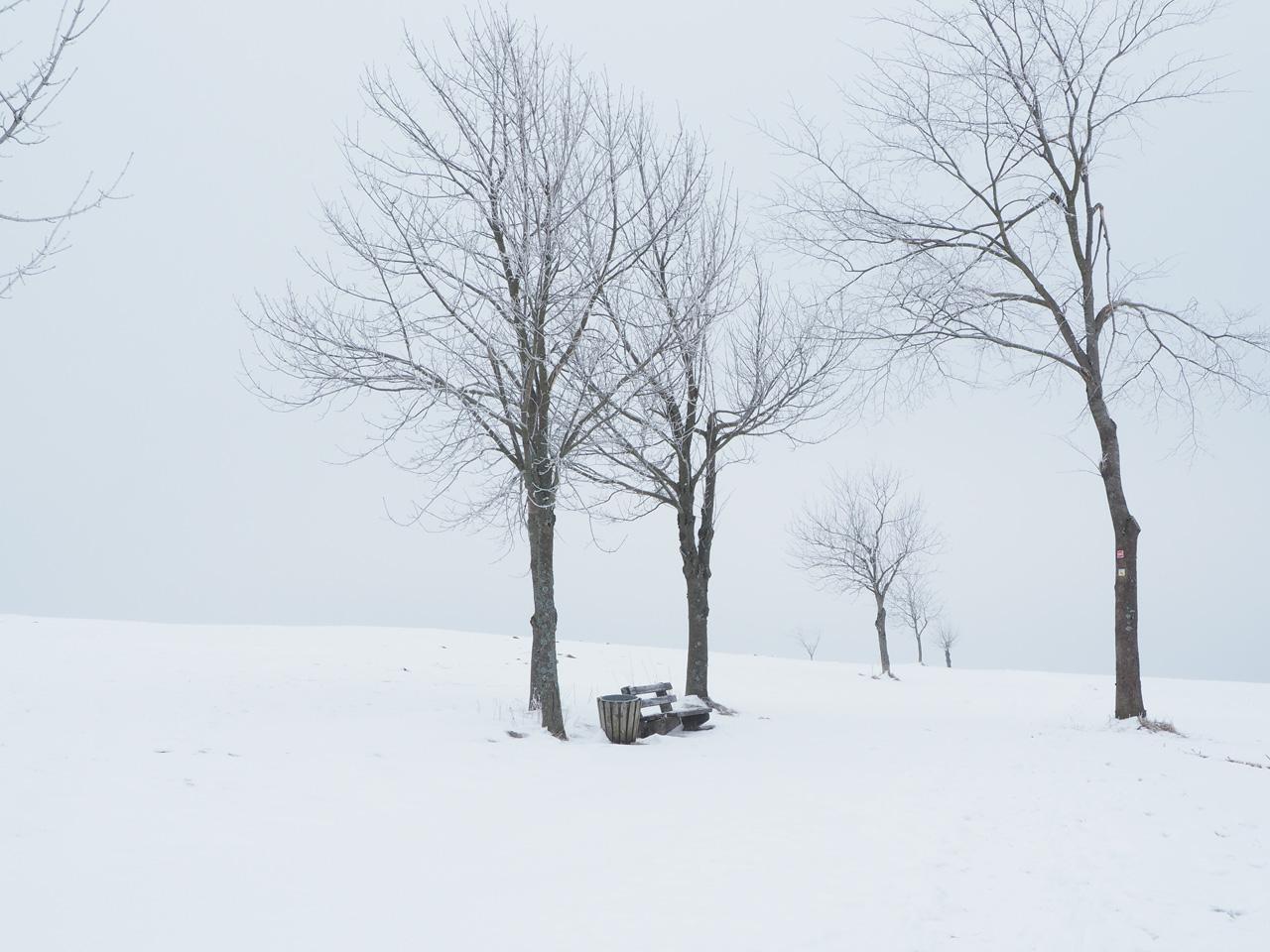 zoeken naar een pad onder de sneeuw