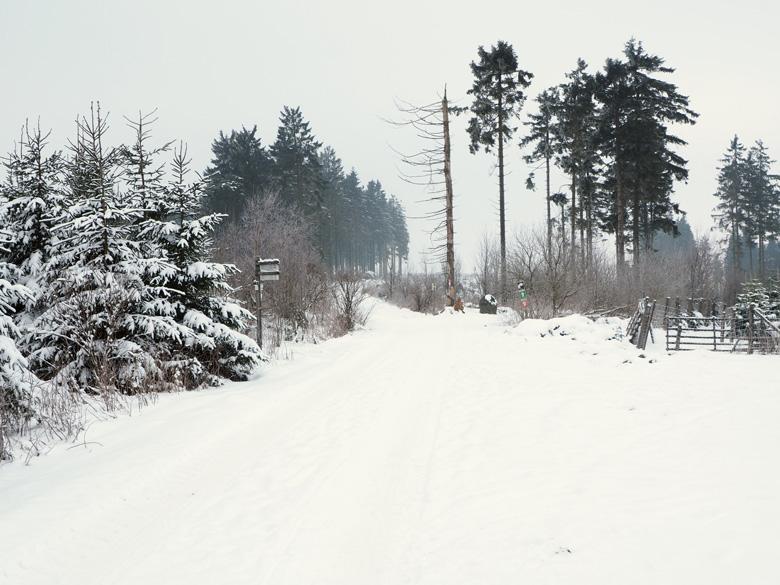 een prachtig wit landschap