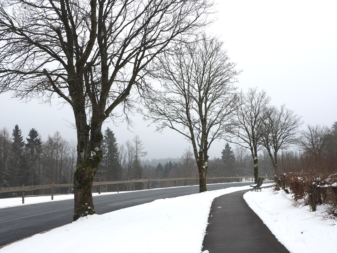 langs de Jagdhauser Strasse