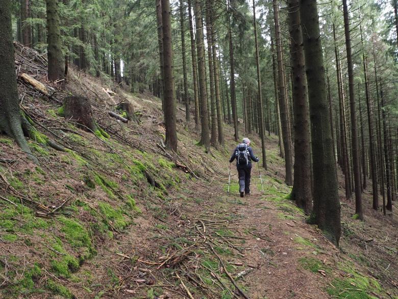 smal pad langs de berghelling
