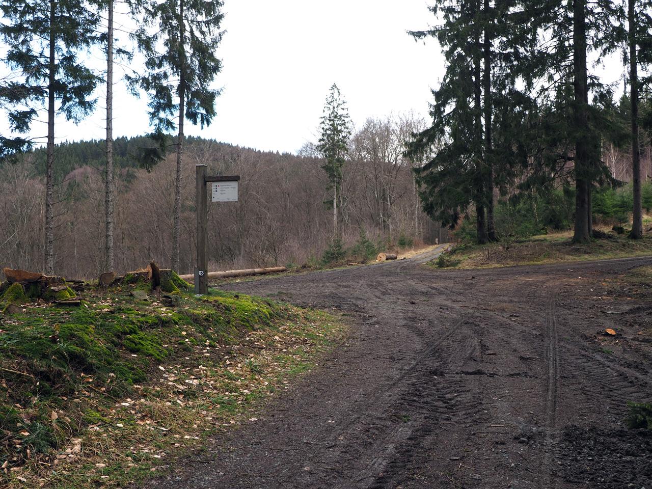 knooppunt tussen Waldemei en Trinsberg