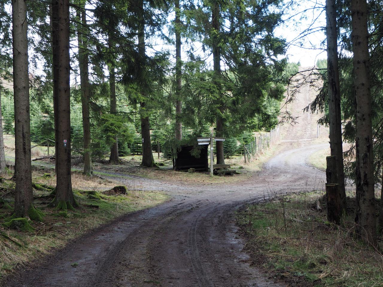 bij de Schutzhütte Waldemei