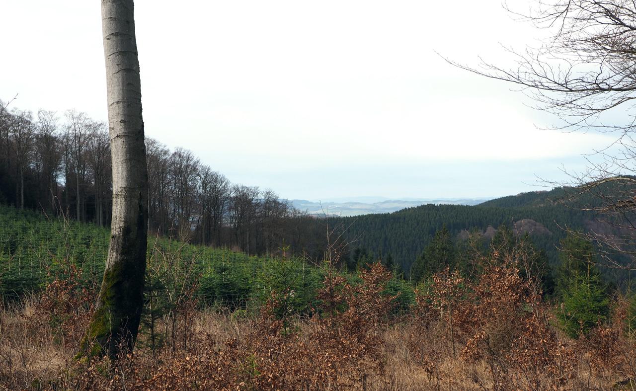 uitzicht vanaf de bergkam