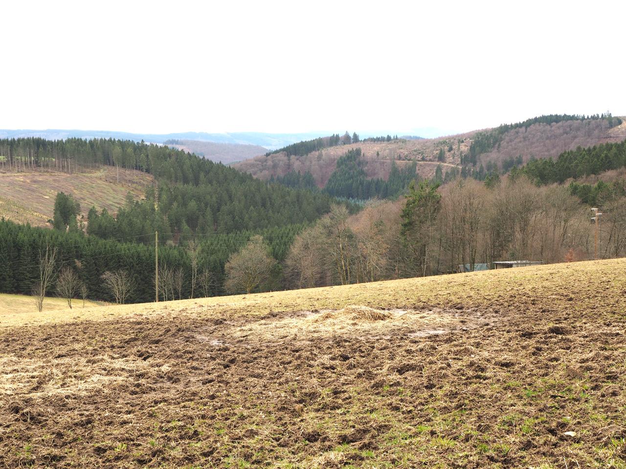 het uitzicht naar Nordenau