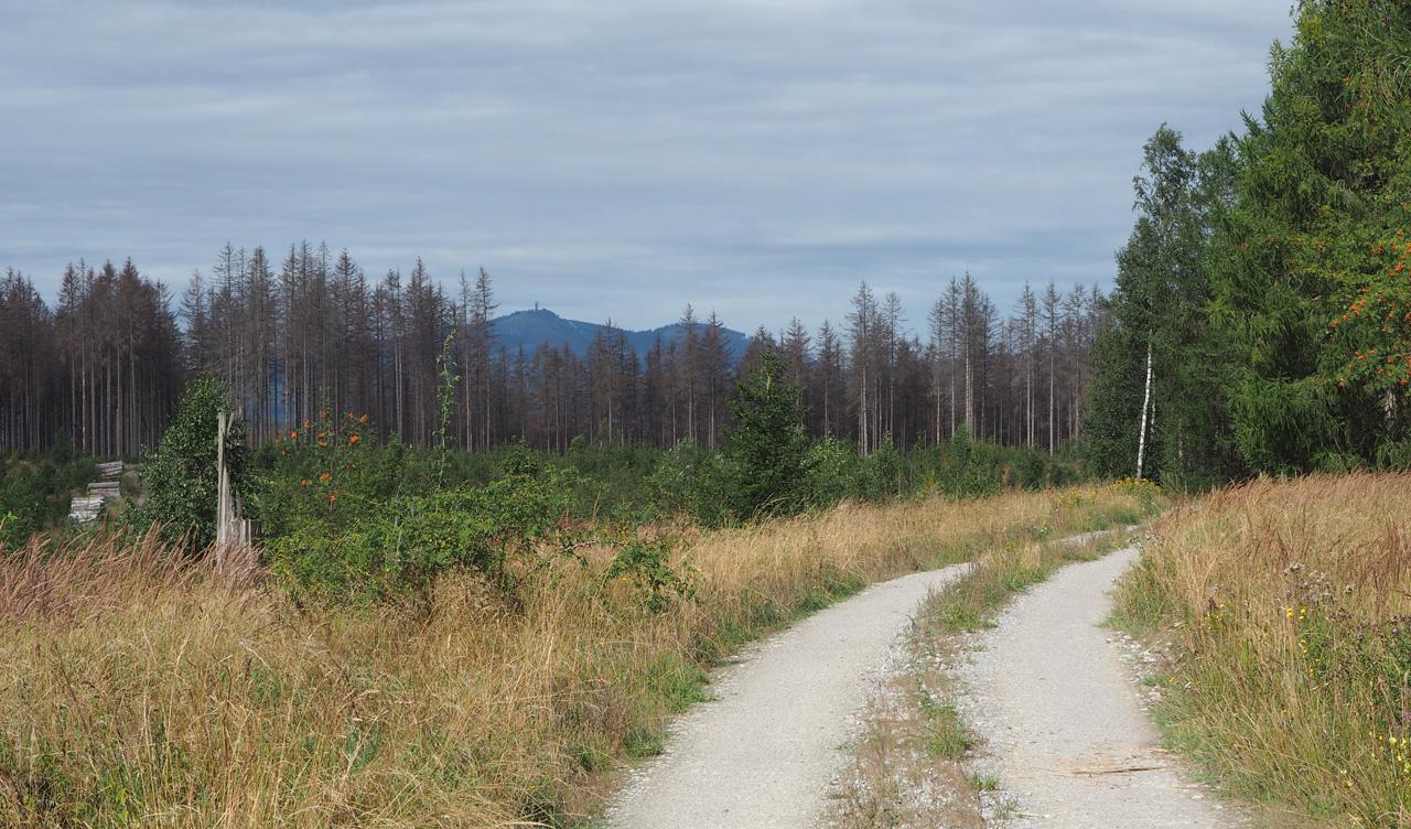 heerlijk lopen over de bergrug