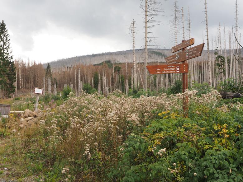 afslag voor de brug over de Schlüsiebach