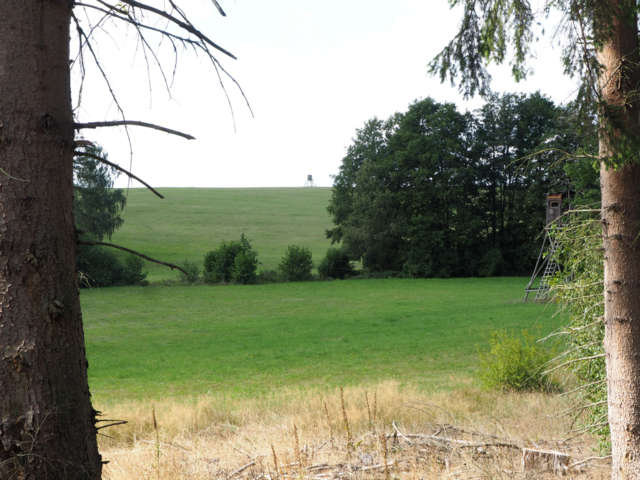 uitzicht over de grashellingen