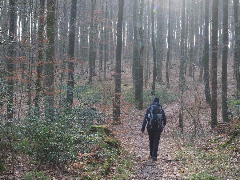 omhoog naar het Wald Freibad