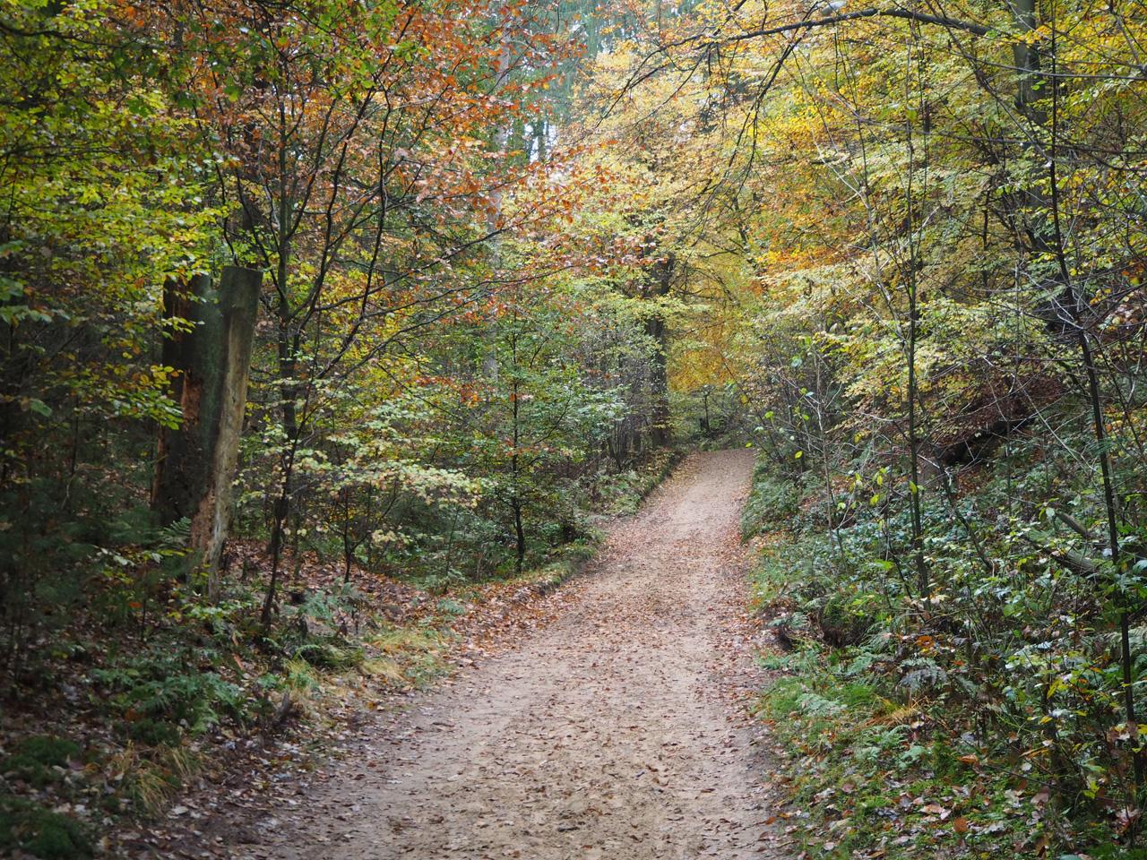 een recht pad door het dal