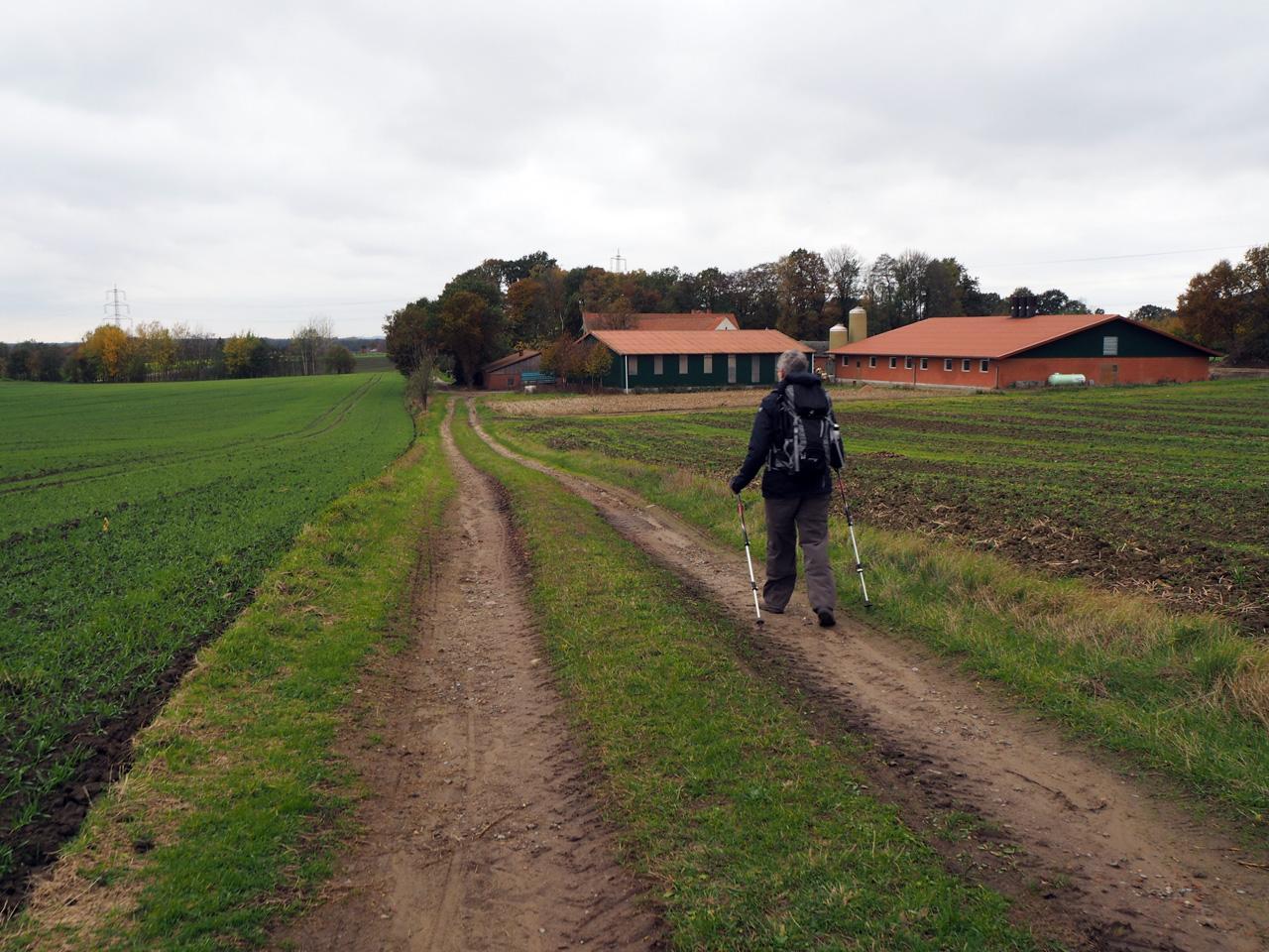 door de heuvels naar Riesenbeck