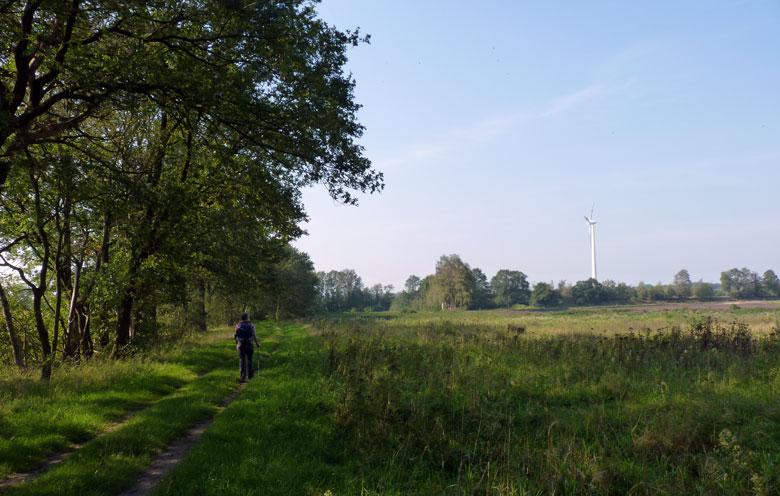 een mooi natuurgebied met overal die grote windmolens