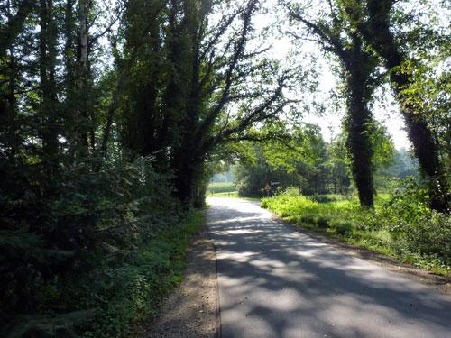 weg naar de Hardinghauser Quellen