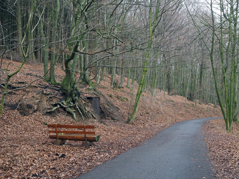 asfaltweg omhoog de berg op