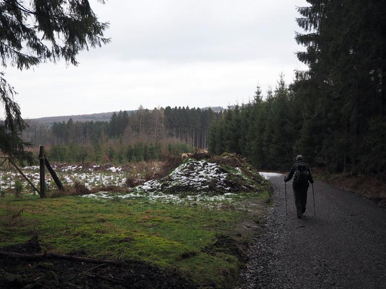 een zeer afwisselend bosgebied