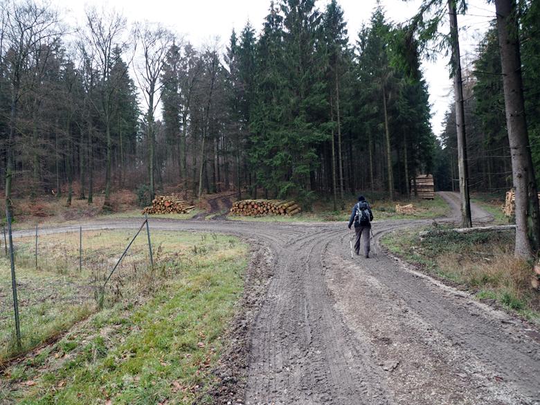 brede paden over de Kamm