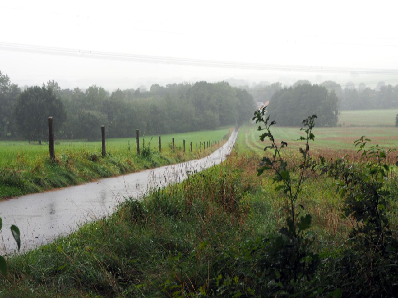 beperkt uitzicht in de stromende regen