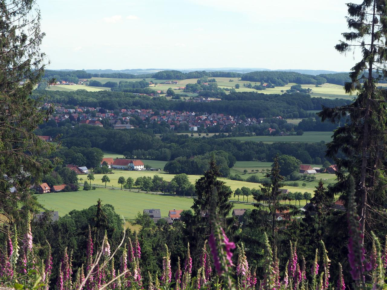 uitzicht vanaf de Musenberg