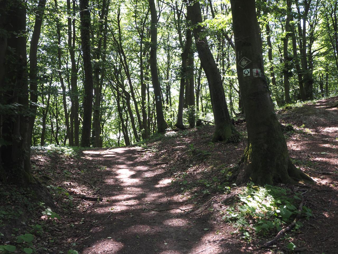 Hermannsweg en Ahorn Weg