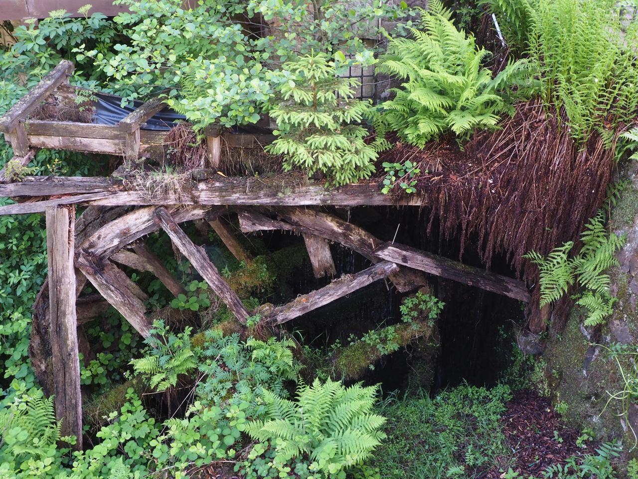 de 40 meter hoge rotswand van de Externsteine