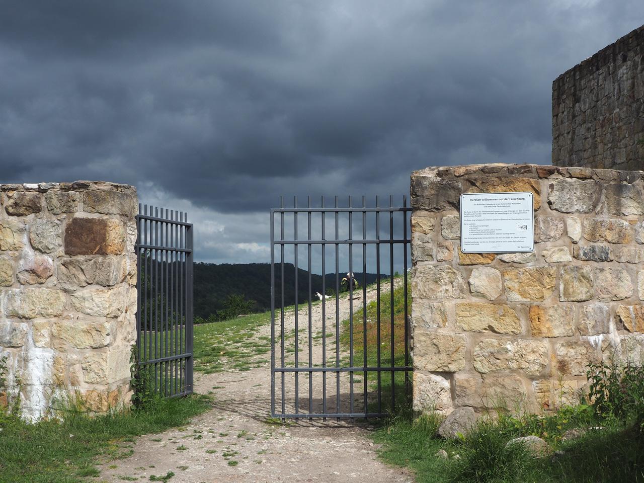 bosonderhoud... er is nog niet opgeruimd