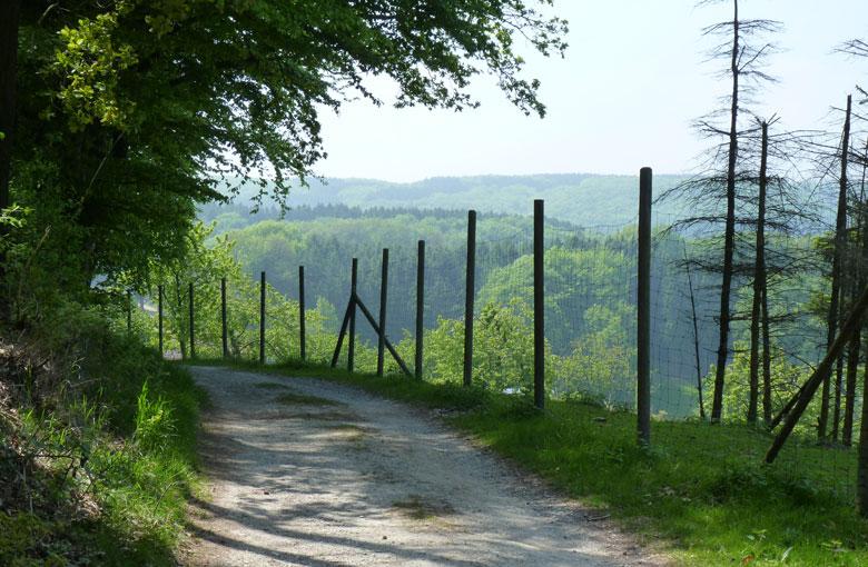 Boven de kwekerij volgt een prachtig uitzicht over het landschap met in de verte Tecklenburg