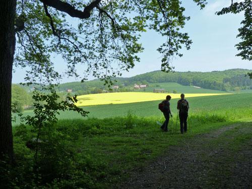 prachtig uitzicht over de omgeving met bloeiende koolzaadvelden