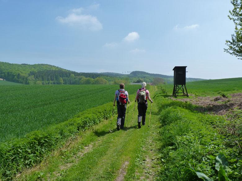 een lang recht pad door de heuvels tot aan een boerderij