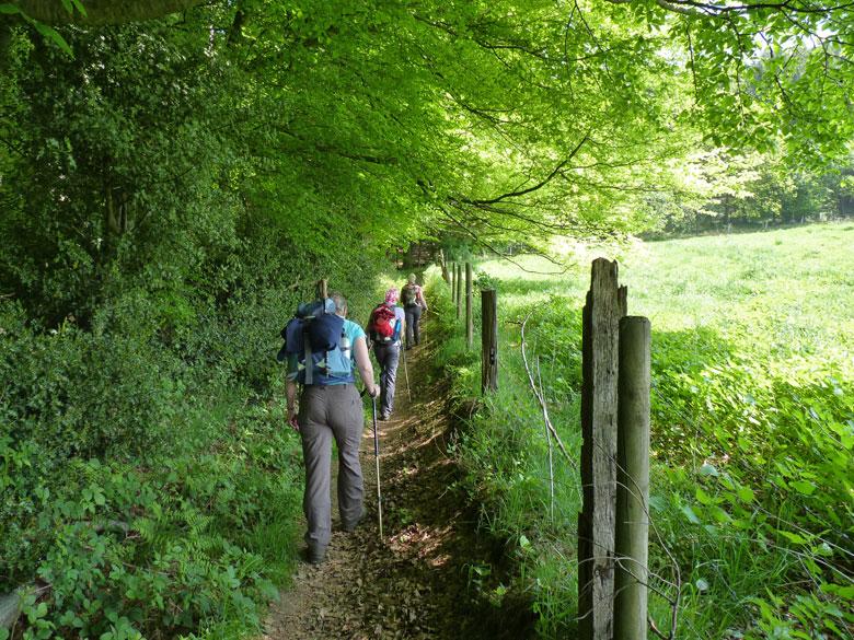 achter het bankje nemen we een smal pad langs het weiland