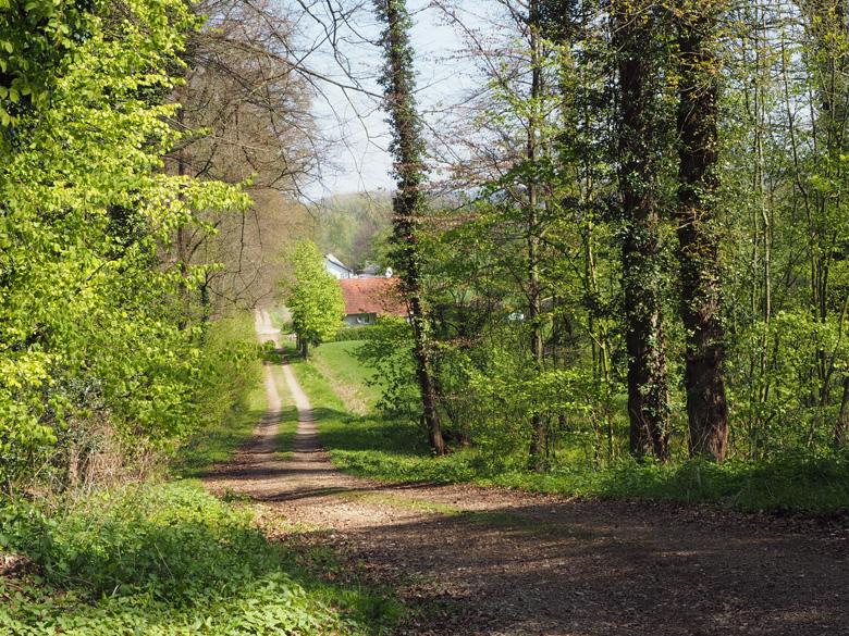 glooiende wandelpaden rond Leeden