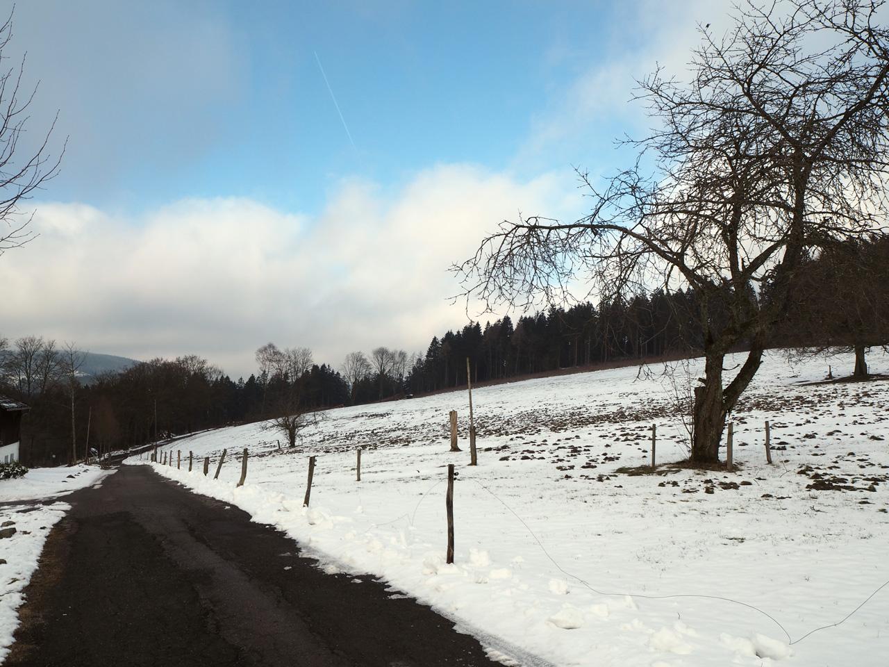 afdaling naar Jagdhaus