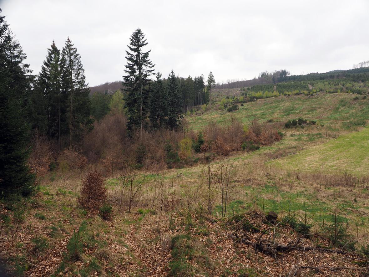 het dal achter de Birkegge