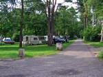 Ruime plaatsen in het groen op camping Am Auwaldsee