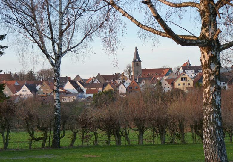 het stadje Barntrup ligt op 5 minuten lopen. Daar zit voldoende horeca en een supermarkt is dichtbij