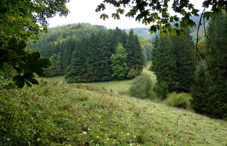 op weg naar Latrop zijn er een paar mooie doorkijkje over de omgeving