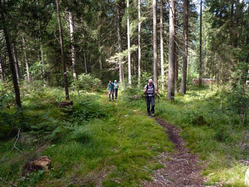 door het bos richting de ingang van de Klamm