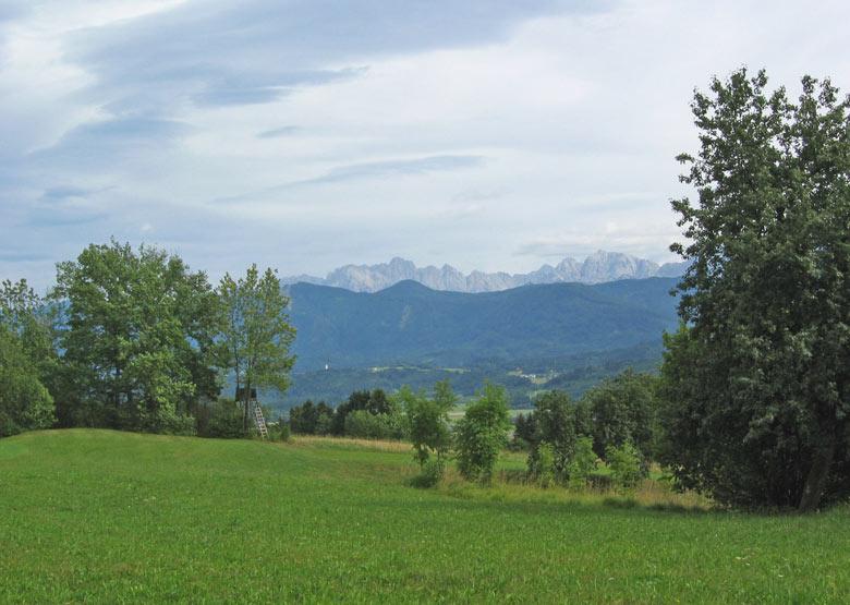 terug gaan we dwars door de schitterende alpenweiden zonder ons aan gebaande paden te storen