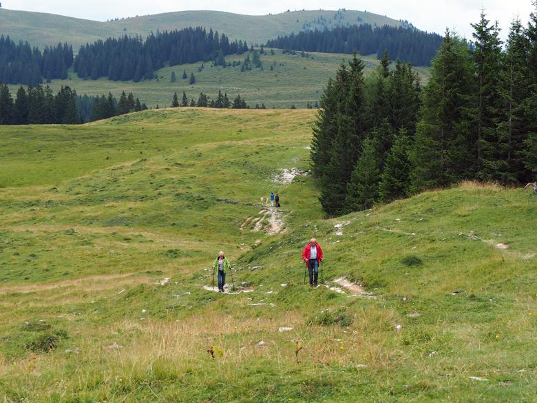 de mooie wandelroute naar Almgasthof Huber