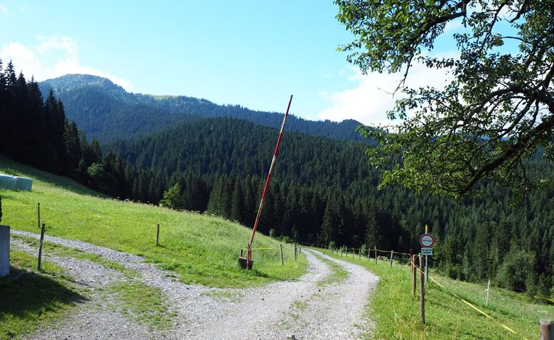 langs de boerderij naar het bos