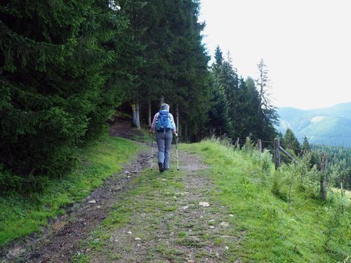 het pad naar Mauerreith