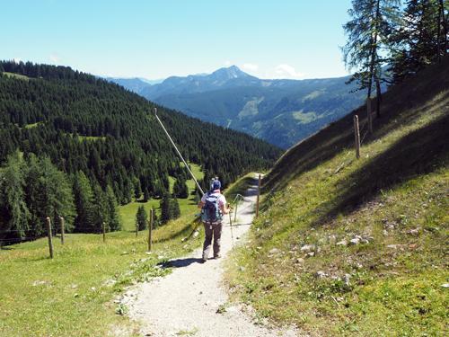 het pad wordt een bergpaadje