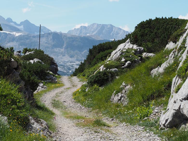 een breed pad terug naar het dalstation