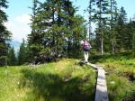 Afwisselend wandelpad onderlangs de berghelling