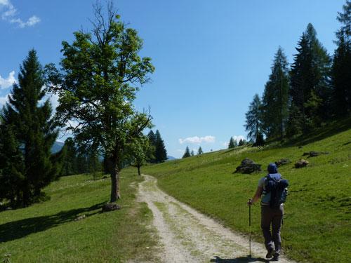 gemoedelijk wandelen door de Alpenweiden