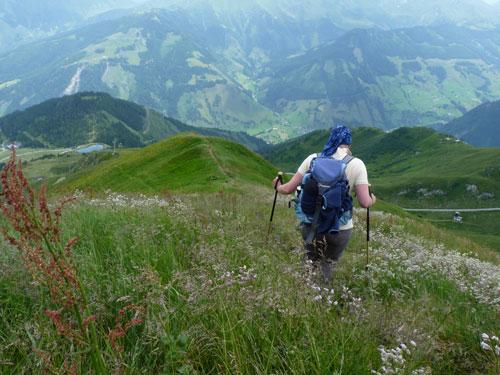 afdalen tussen de Alpenbloemen