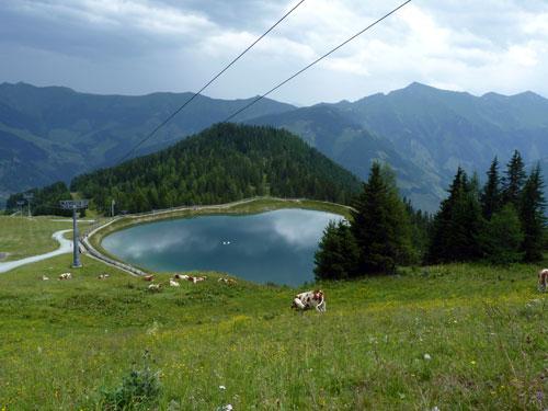 meertje bij het bergstation