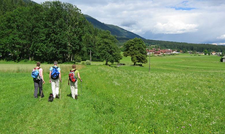 ...dwars door de in alpenweiden terug naar Grafendorf
