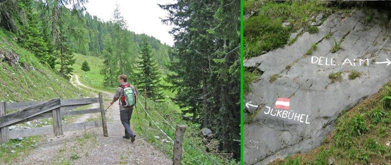 Alpenwei boven Dellacher Alm