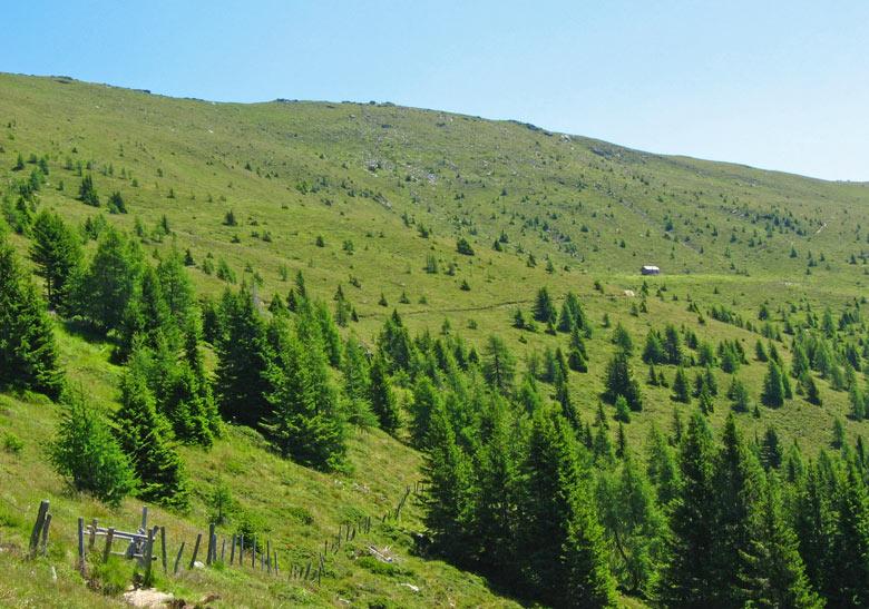 de bergrug waar we over heen willen